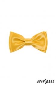 Sytě žlutý chlapecký motýlek