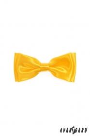 Výrazný chlapecký motýlek ve žluté