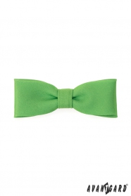 Zelený výrazný pánský motýlek